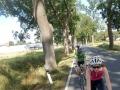 BikeDay_1
